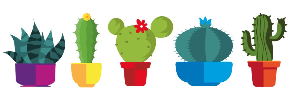 Cacti Illustrations - Kurt Trew